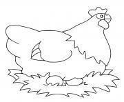 poule dessin à colorier