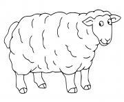 mouton dessin à colorier