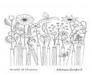 Coloriage Adulte Flower Pencils From World Of Flowers