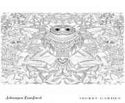 Owl From Secret Garden dessin à colorier