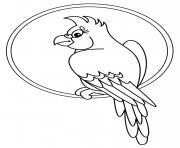 perroquet assis sur un cercle dessin à colorier