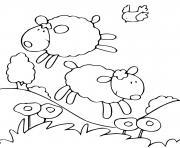 moutons et oiseau dans la nature dessin à colorier
