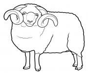 mouton aid dessin à colorier