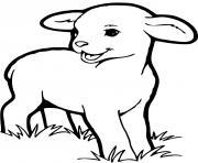 bebe mouton dessin à colorier