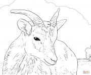 mouflon canadien de la ferme dessin à colorier