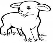 agneau le jeune mouton dessin à colorier