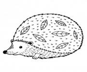 herisson animal zen dessin à colorier