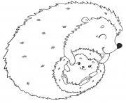 herisson et son bebe dessin à colorier