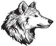 Coloriage loup male animal