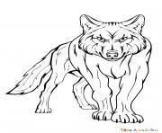 loup apercoit une proie dessin à colorier