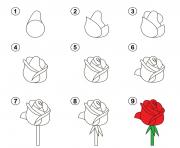 apprendre a dessiner une rose dessin à colorier