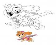 Stella Responsable De Laviation Paw Patrol dessin à colorier