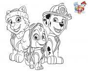 Paw Patrol Avec Stella Everest Marcus dessin à colorier