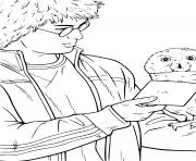 hedwig le hibou de harry potter avec une lettre a envoyer dessin à colorier