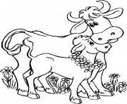 la maman vache avec son petit veau dessin à colorier