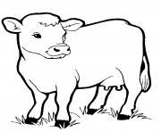 veau bebe vache dessin à colorier