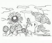 nature fleurs papillon soleil dessin à colorier