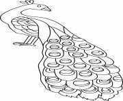 paon facile oiseau dessin à colorier