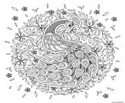 paon oiseau adulte mandala dessin à colorier