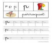 lettre P pour Perroquet ecriture cursive gs dessin à colorier