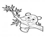 Panda 17 dessin à colorier