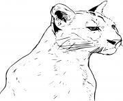 puma panthere realiste dessin à colorier