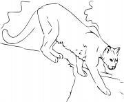 puma le cougar de montagne dessin à colorier