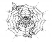 araignee papillon mandala adulte dessin à colorier