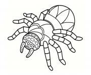 araignee mandala pour relaxer dessin à colorier