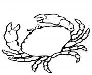 crabe realiste dessin à colorier