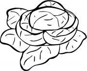 salade laitues dessin à colorier