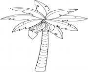 arbre bananier qui fait des bananes dessin à colorier