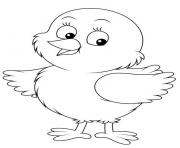 poussin bebe poule domestique dessin à colorier