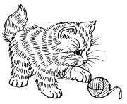 adorable chaton qui joue dessin à colorier