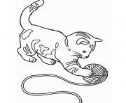 chaton chatonon dessin à colorier