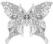 mandala papillon dessin à colorier