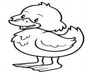 petit canard maternelle dessin à colorier