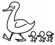 canard et les petits canards dessin à colorier