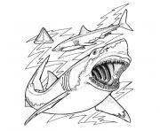 Coloriage requin mandala par bimbimkha dessin