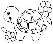 bebe tortue avec des fleurs dessin à colorier