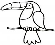 Coloriage toucan avec un bec jaune et une tache noire dessin