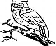oiseau chouette sur une branche arbre dessin à colorier
