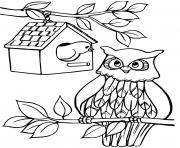 une cabane a oiseaux et un hibou dessin à colorier