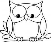 chouette mignon regarde en bas dessin à colorier