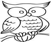 chouettex avec de gros yeux dessin à colorier