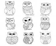 neuf chouettes hiboux dessin à colorier