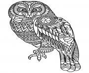 chouette mandala dessin à colorier