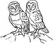 deux animaux chouettes dessin à colorier