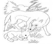 louve et louveteau dessin à colorier