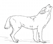 loup hurlant par Lena London dessin à colorier